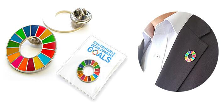 SDGsバッジ(ピンズ、ピンバッジ):SDGsカラーホイールのピンズ(バッジ、ピンバッジ)