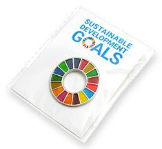 SDGsバッジ(ピンズ、ピンバッジ)のパッケージ参考例【台紙 +OPP袋】の画像