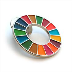 SDGsバッジ(ピンズ、ピンバッジ)の着色方法「ソフトエナメル」の画像