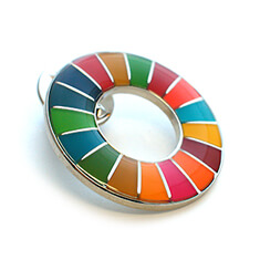 SDGsバッジ(ピンズ、ピンバッジ)の着色方法「ソフトエナメル(樹脂加工)」の画像