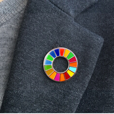 SDGs バッジ(ピンズ、ピンバッジ)「サイズ / 25.5mm」の画像